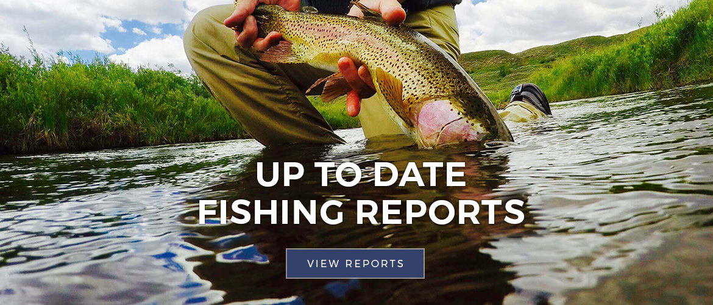 slider fishing reports