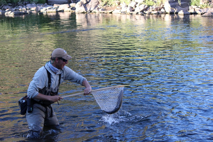 Eagle river fishing report 7 25 13 minturn anglers for Colorado one day fishing license
