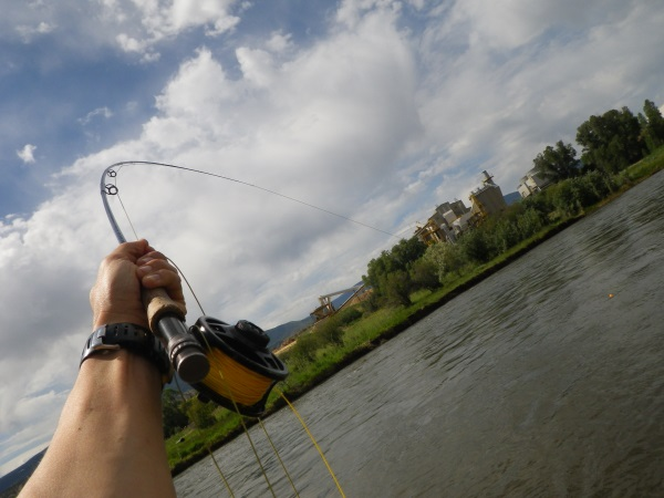 Eagle river fishing report downvalley wolcott to gypsum for Eagle river fishing report