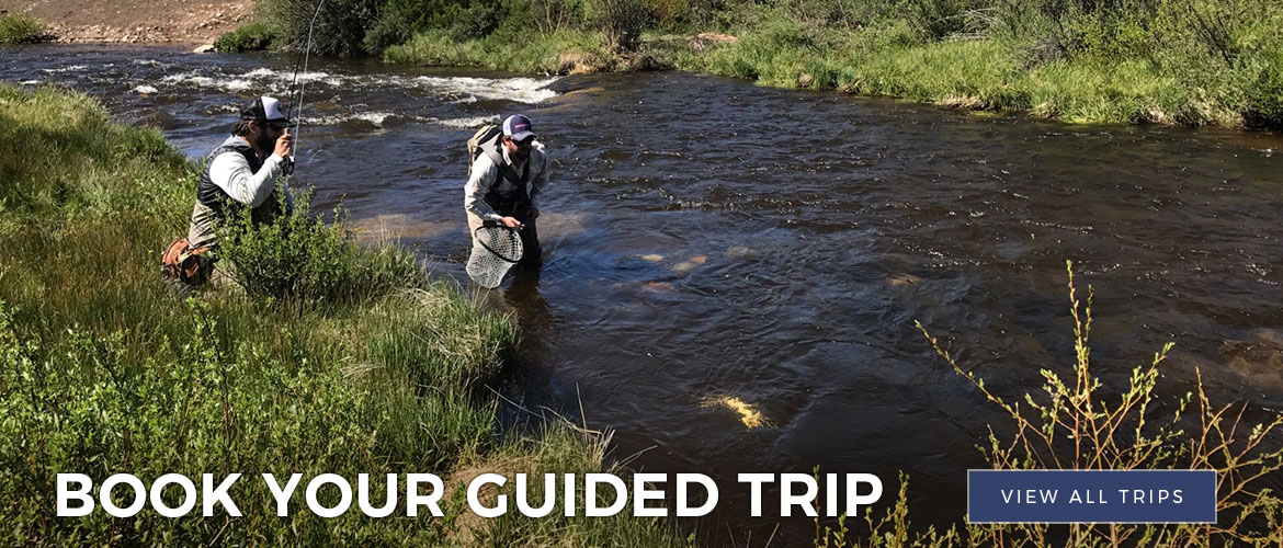 Minturn Anglers Guided Trip