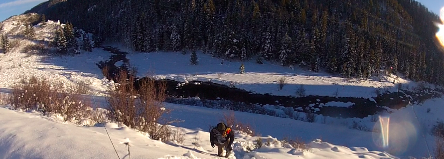 Yampa river tailwater steamboat winter fly fishing for Yampa river fishing report