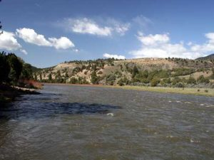 colorado river report fly fishing