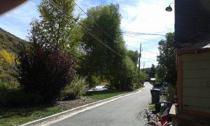 2014-10-07 minturn backyard1