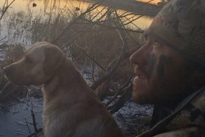 Waterfowl Update-Man hunting ducks with his dog in any weather