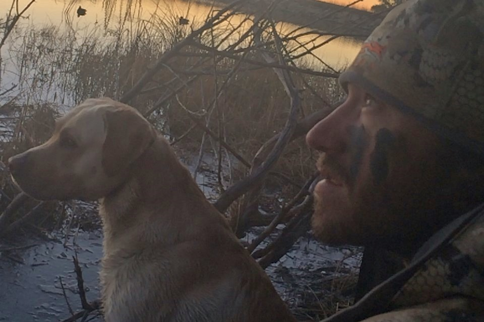 15533-Nov.3rd Waterfowl Update-Man hunting ducks with his dog