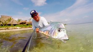 African Pompano_MX