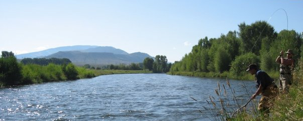 South Platte river denver-Fishing has not been this good EVER