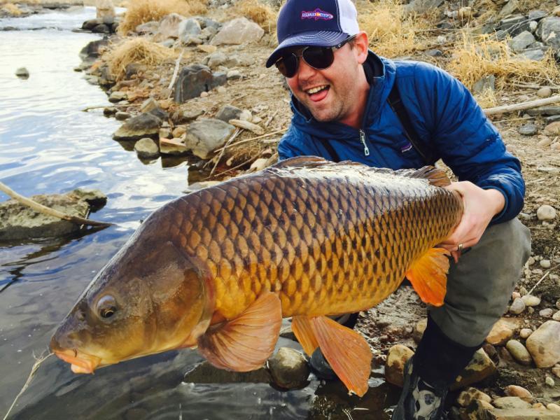 fly fishing Carp Denver south platte