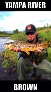 8113-Summertime Yampa River Fishing-brown trout