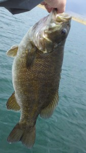 5lbs smallie from undisclosed front range reservoir