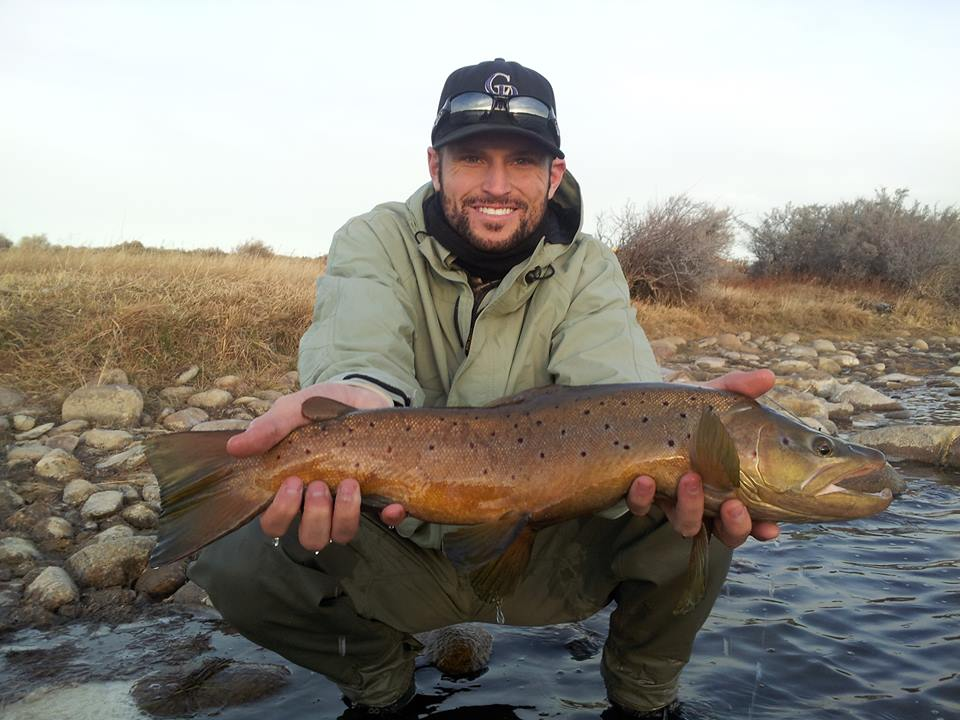 miracle mile male brown trout november