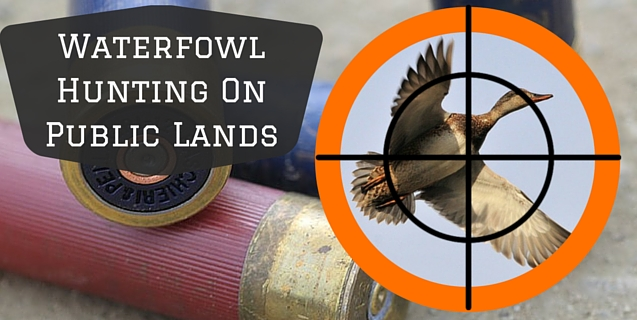 diy-colorado-waterfowl-hunting-on-public-lands