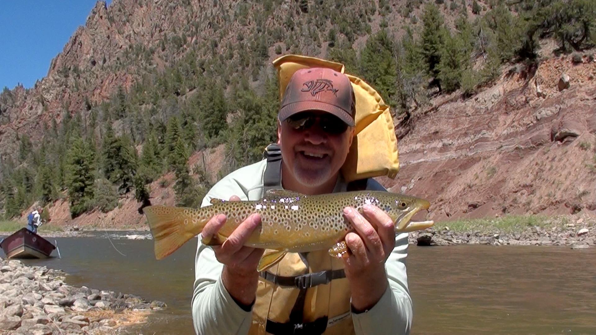 colorado hatch chart colorado fly fishing reports