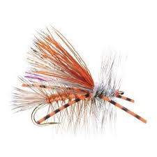 Minturn Anglers Denver Vail Eagle River Core Stonefly Dry Fly