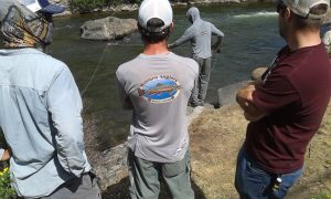 Fly fishing Guides Colorado Vail Minturn Anglers