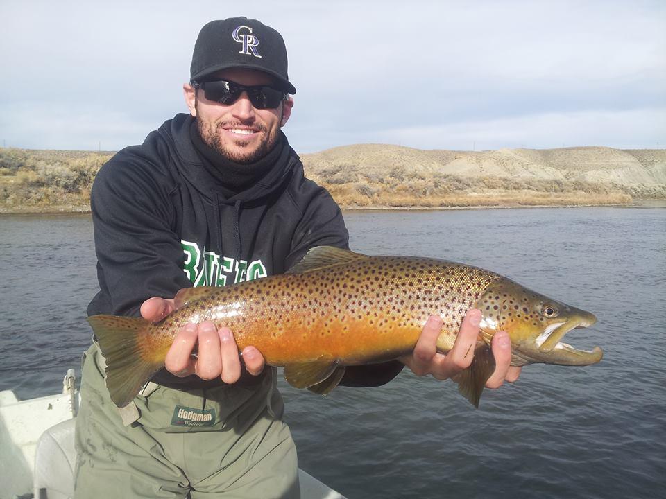november brown trout n. platte wyoming