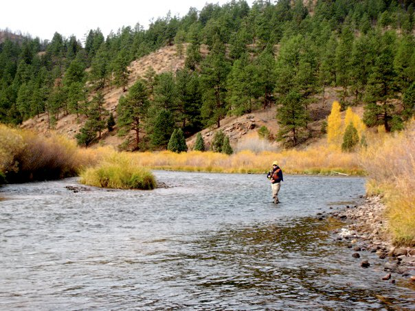 south platte deckers fall