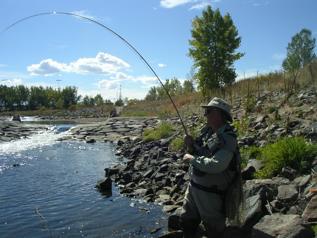 Denver Fly Fishing