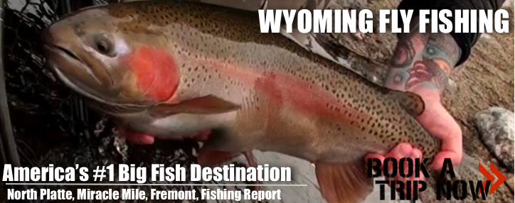 Wyoming Fly Fishing North Platte River Info