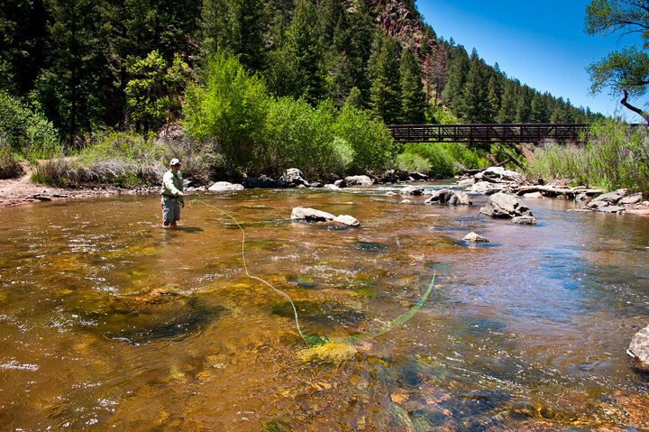 Deckers Fishing Report for South Platte River